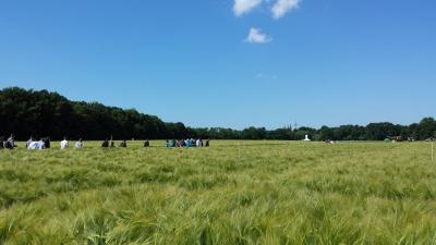 (Foto: Weber) Schönstes Wetter auf den Agravis Feldtagen.