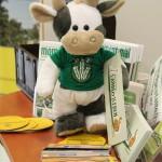 (Foto: WLL) Wilma füllt die Flyer auf. Erste Aufgabe um 9.00 Uhr auf dem Landjugendstand auf der Grünen Woche.