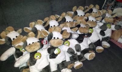 (Foto: Weber) Die Wilmas stehen in den Startlöchern...