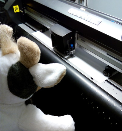 (Foto: Weber) Wilma schaut dem Plotter bei der Arbeit zu