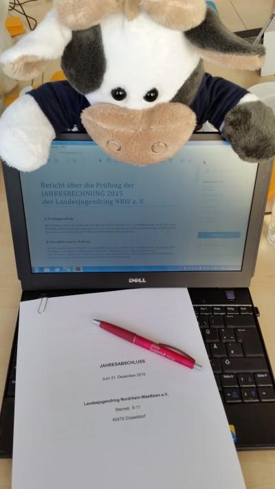 Wilma bei der Kassenprüfung des LJR NRW Foto-Reinl