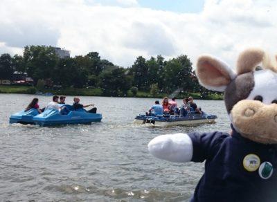 (Foto: WLL) Auf dem Aasee voll mit dabei - Wilma!