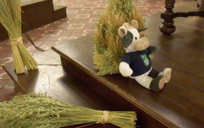 (Foto: BDL) Die Mini-Erntekrone, die den Altar schmückt, hat exakt Wilmas Größe. Wie gern hätte sie die mitgenommen!