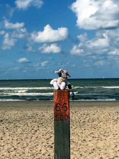 (Foto: LJ Halver) Wilma am Strand