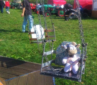 (Foto: LJ Halver) Wilma hat jede Menge Spaß im Kettenkarussell