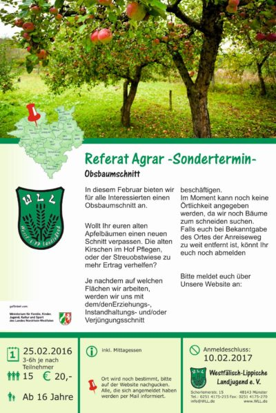 Flyer Obstbaumschnitt