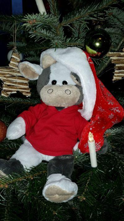 (Foto: WLL/Engberding) Fröhliche Weihnachten