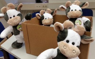 (Foto: WLL/Engberding) Unsere Wilmas sind bereit für den Umzug