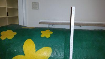 (Bild: WLL/Engberding) Wilma hat ein Stockmaß von ca. 1,30 m