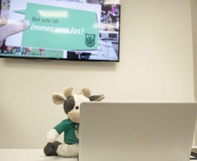 (Foto: WLL/Welpelo) Wilma auf der Klausur unseres Vorstandes