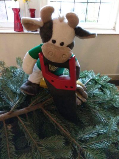 (Foto: WLL/Reinl) Der Weihnachtsbaum ist weg 3