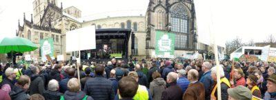 Auf der Bühne war genau so viel los, wie vor der Bühne (Foto: WLL/Welpelo)