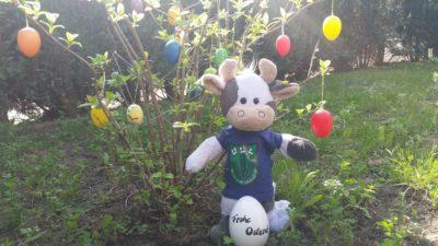 (Bild: WLL/Engberding) Wilma wünscht frohe Ostern!