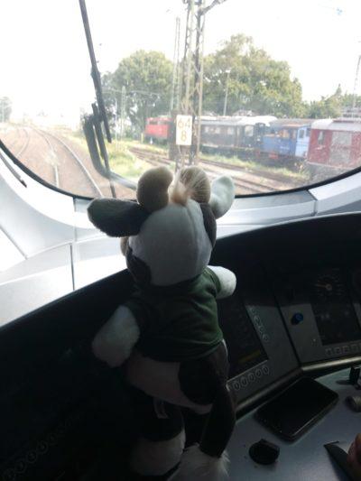 (Foto: Weber) Eine Zugfahrt voller Möglichkeiten, auch für Wilma