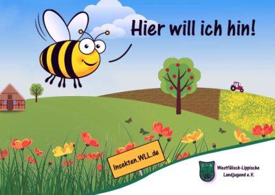 Insektenschutz ländl. Raum