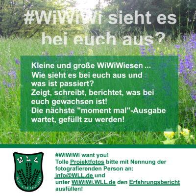 (Foto: WLL) WiWiWi want you! Wie sieht es bei euch aus?