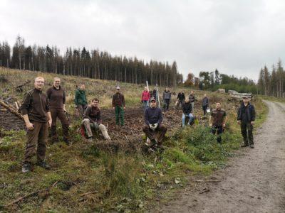 (Foto: LJ Rüthen/Manuel Höttecke) Zaunbau zur Waldaufforstung