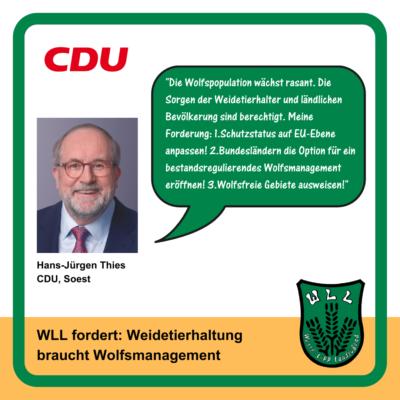 Kommentar Hans-Jürgen Thies